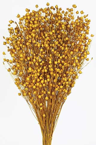 Lin Flower Aspen Gold***out Of Stock***