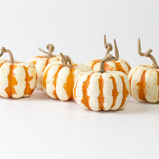 Pumpkins 2 White/orange