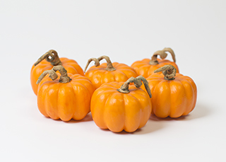 Pumpkins 2 Orange (only 3 Bags Left!!)