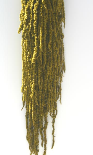Hanging Amaranthus Lt Grn ***sold Out 'til Further Notice***
