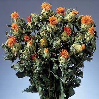 CARTHAMUS (SAFFLOWER)