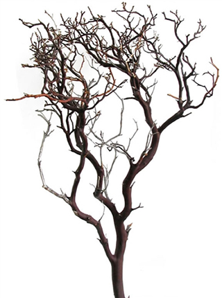 MANZANITA 6\' NATURAL ***SOLD OUT 'TIL FURTHER NOTICE USE SANDBLASTED***