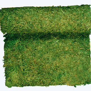 MOSS CLOTH(DYED GREEN)