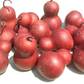 Pear Gourds Brick Red
