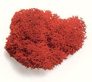 Reindeer Moss Supersoft Red