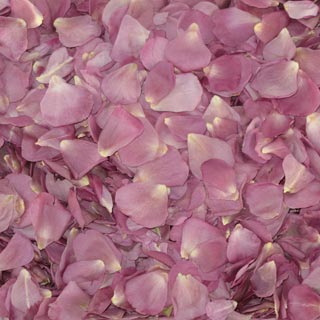 Freeze Dried Rose Petals Lavender