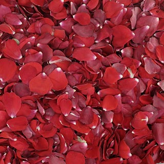 Freeze Dried Rose Petals Bridal Red
