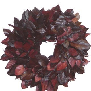 Wreath Salal  Burgundy 21-22 Preserved