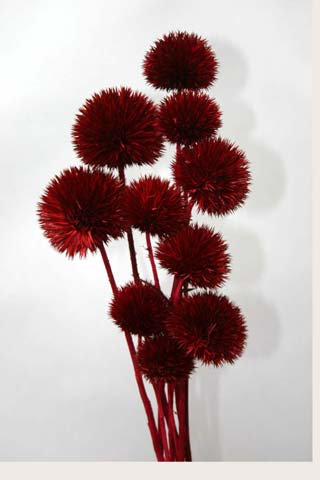 Giant Thistle Burgundy***sold Out 'til Further Notice***