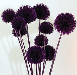 Giant Thistle Purple***sold Out 'til Further Notice***